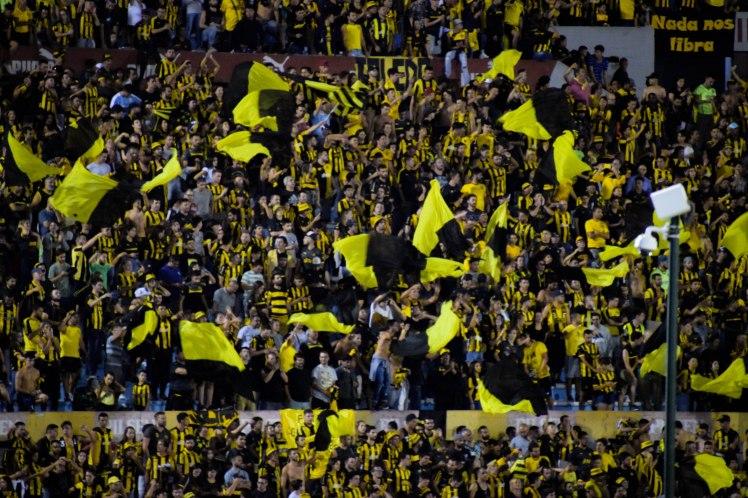 banderas p
